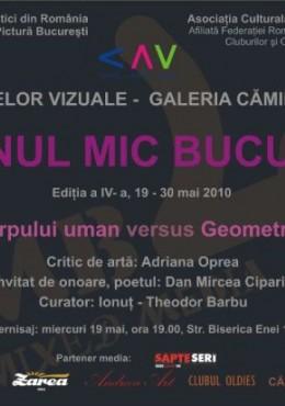 expozitie de grup Salonul Mic Bucuresti, Galeria Caminul Artei